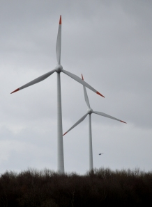 Vlucht tussen de windmolens