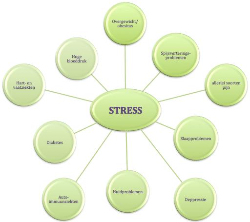 stress-factoren